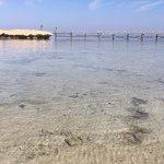 Photo de Concorde Moreen Beach Resort & Spa Marsa Alam