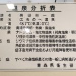 Hachinohe Onsen의 사진