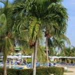 Foto de Hotel Playa Costa Verde