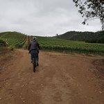Foto de La Bicicleta Verde