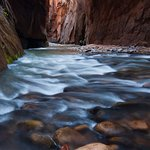 Narrows Information and Zion Trip Planning