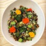 Ricotta Gnocchi, broad beans, peas, pangrattato & nasturtiums.