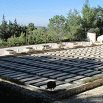 Mount Herzl National Cemetery Photo