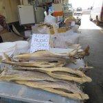 Discounted Fresh Fish ?