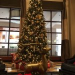 Photo de New Haven Hotel