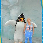 aviary-image-1512784941317_large.jpg