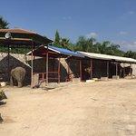 Photo of Hutsadin Elephant Foundation