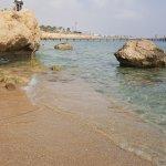 The Rea Sea
