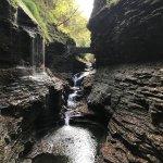 Foto de Watkins Glen State Park