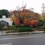 周りの樹々も色づいて