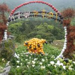 Photo of Yangmingshan National Park