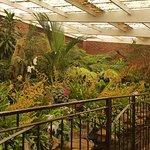 Durban Botanic Gardens Foto