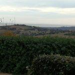Photo de La Cantina di Ale a Palazzo Bello