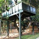 Observation deck for bird watching