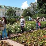 Photo of Alexander Garden (Aleksandrovsky Sad)