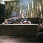 Indigenous Kitchen