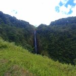 Photo of Akaka Falls State Park