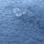 검은모래 해변