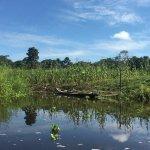 Otorongo Amazon River Lodge Bild