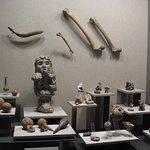 Photo of National Museum of Anthropology (Museo Nacional de Antropologia)