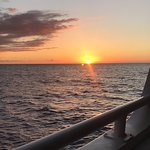 Foto di Body Glove Cruises