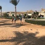 Foto de Coral Sea Sensatori - Sharm El Sheikh