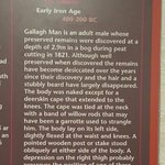 Gallagh Man information display