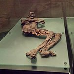 One of the eerily preserved bog men from 400-200 BC