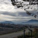 Photo of Agriturismo Collina dei Fagiani