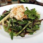 Prawn Meat Salad