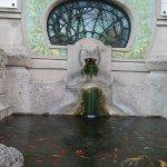Billede af Acquario civico