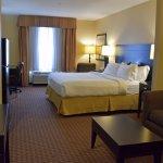 Foto de Holiday Inn Express Hotel & Suites Ozona