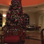 The Christmas tree in the lobby.