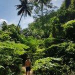 Photo of Phi Phi Island Village Beach Resort