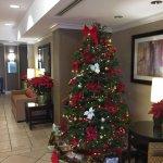 Foto de Holiday Inn Express San Diego-Sorrento Valley