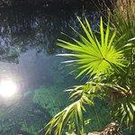 Photo de Cenote Crystal
