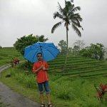 IMG_20171018_105956_large.jpg