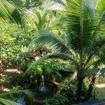 Photo of Chaokoh Phi Phi Hotel & Resort
