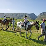 Horse riding on the farm..a great activity for all ages.