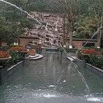 Afternoon tea in garden, listen to sound of waterfall.