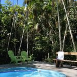 This is the swimming pool surrounding by palms. Come and Enjoy it!