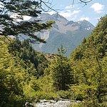 Bild från Wilderness Lodge Arthurs Pass