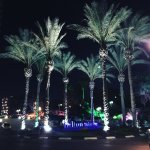 Photo de Hilton Tel Aviv