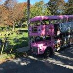 Photo of Halifax Big Pink Hop On Hop Off Tour