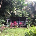 The Toucan's Nest - This was our private little Cabana/Casita ... free standing & very quiet.