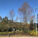 Photo of Halifax Public Gardens