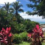 Foto van Costa Paraiso