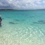 Beautiful Bahamian adventure