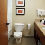 Photo de Comfort Inn & Suites Airport - American Way