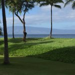 Φωτογραφία: The Westin Maui Resort & Spa